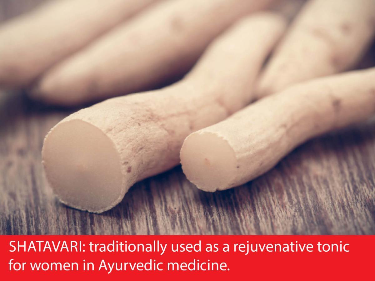Shatavari and women's health